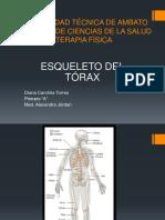 esqueleto del torax