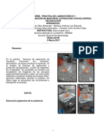 Informe Práctica 4 Extracción pigmentos