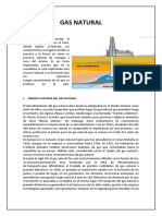 Gas Natural- Informe