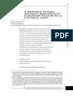 Identidad. Estigma, proceder político y resiliencia en mujeres williche dee Puyehue Chile.pdf
