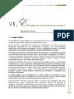 VII. Estrategias Para El Ordenamiento Territorial y El Desarrollo Urbano_0