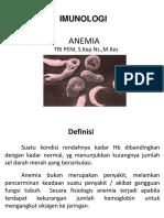 Anemia Ppni