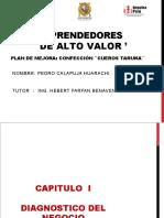 PLAN DE NEGOCIO - PEDRO CALAPUJA. CAP 1,2,3,4doc.doc