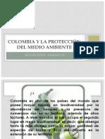 Colombia y La Protección