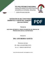 Medina García Luis - B091334