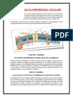 Historia de La Membrana Celular