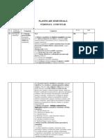 247850456-Nursing-Comuni-Planificare.docx