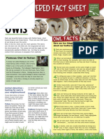 owl_facts
