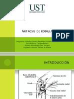 apsgonartrosisdefinitivo-110928202136-phpapp01 (1).pptx