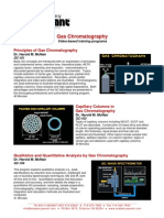 Gc Principio de Cromatografia