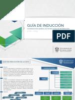 Guia Induccion Cgti v5