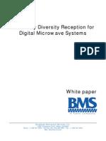 Diversity Whitepaper