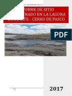 354808507 Informe de Sitios Contaminados Laguna Yanamate