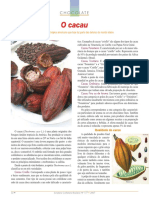 O CACAU CHOCOLATE.pdf