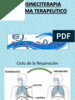 HIDROSINECITERAPIA. Programa de Ejercicios