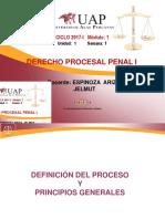 Proceso y Principios Generales