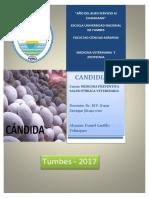 Salud Publica TERMINADO Docx