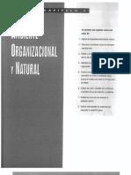 Analisis Del Entorno de La Organizacion