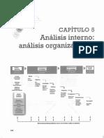 Analisis Interno de La Organizacion