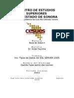 Inv. Tipos de Datos de SQL Server 2005 II