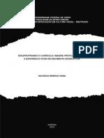 2012_Mauricio_Remigio_Viana - AnarcoPunk tese Mestrado.pdf