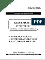 Electricista_Industrial_eeid_201420.pdf
