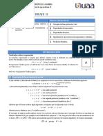 2.-Raices-exponentes-productos-notables.pdf