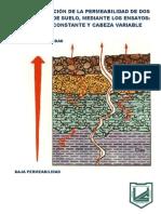 Informe Geotecnia Cabeza Constante y Variable