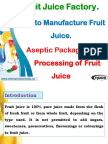 Fruit Juice Factory. How to Manufacture Fruit Juice. Aseptic Packaging and Processing of Fruit Juice