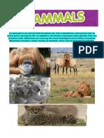 A Mammal is an Animal That Breathes Air