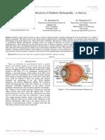 Automated Identification of Diabetic Retinopathy
