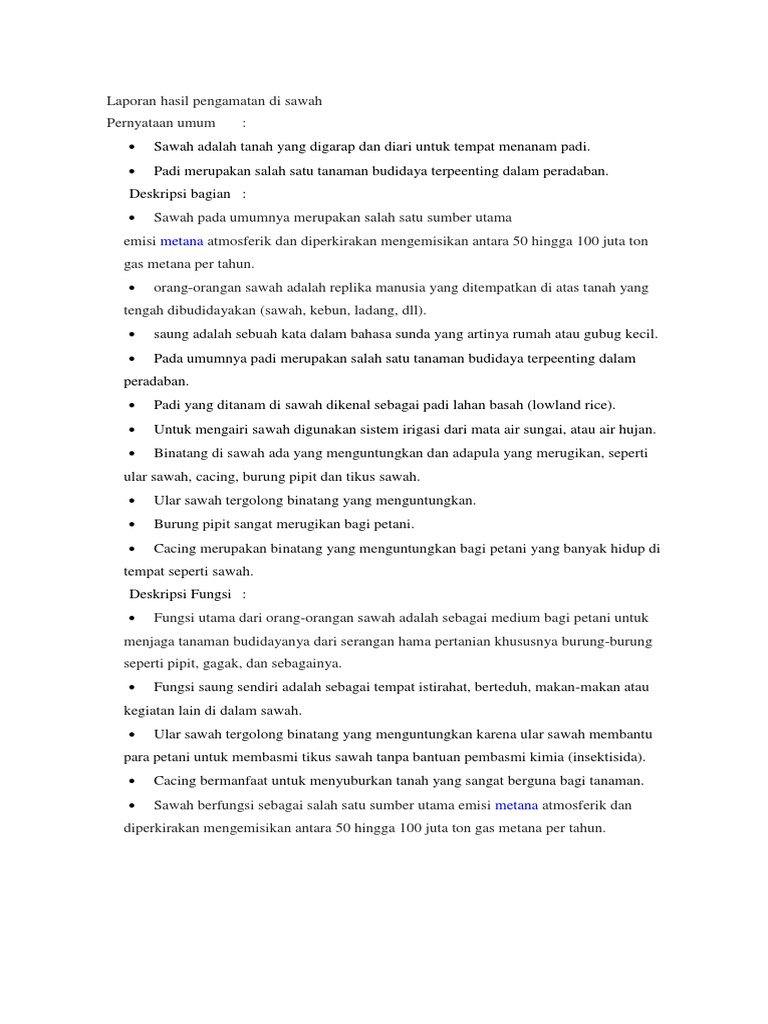 Contoh Teks Laporan Hasil Observasi Tentang Rumah Berbagai Teks Penting