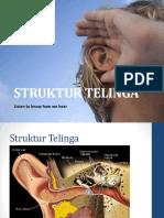 struktur_telinga