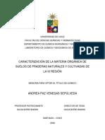 qf-venegas_a.pdf