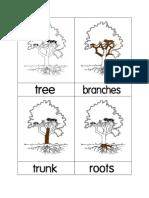 Tree Nomenclature Cards