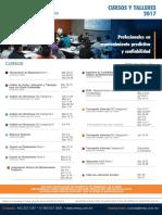 IMMP2017.pdf