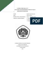 260110150013_Luthfi Utami S._analisis Bahan Baku Kloramfenikol Menggunakan Spektrofotometri IR