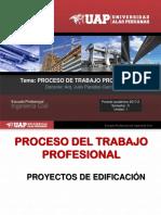 6. Proceso de Trabajo Profesional