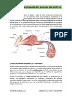 TEMA 6_Ciencias Del Salud y Del Deporte