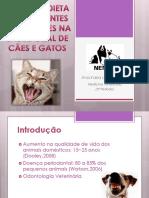 Dieta Na Saúde Oral de Cães e Gatos