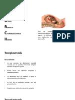 Toxoplasma y Rubeola