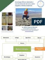 Biotecnologia Minera Botanica