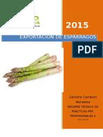 II-PRACTICAS-PRE-PROFESIONALES-CAROLINA-IMPRIMIR-ORIGINAA.docx