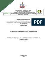 Dissertacao_FitoterapiaPopularBairro