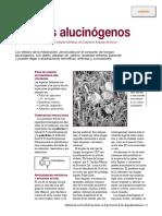Hongos Alucinógenos.pdf