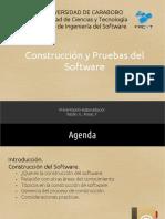 construccionypruebasdesoftwarepresentacion-121112172057-phpapp02