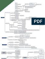 Esquema Dr. Verónica PDF Final