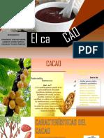 Cacao Ppt Unac