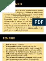 Biología  Mololecular del Cáncer.pdf