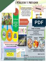 Infografia Bienes y Servicios Publicos Romer Ortiz 18.333284